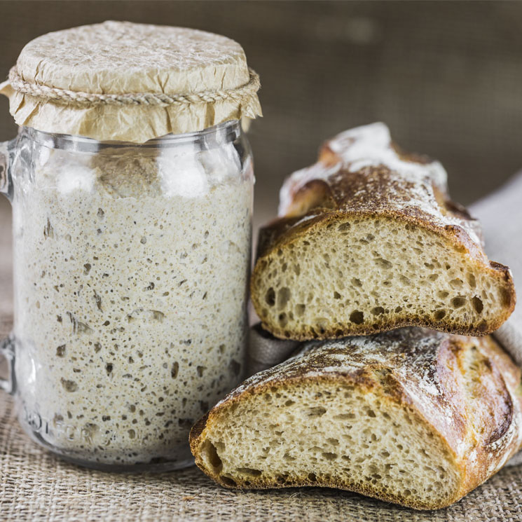 fermentación-del-pan